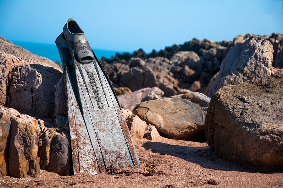 Find The Best Freediving Fins With This Buying Guide