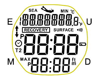 Screen Display on Driver Freediving Watch